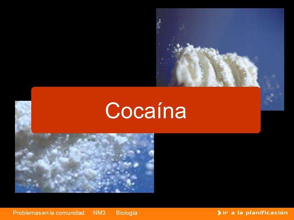 Problemas en la comunidad NM3 Biología Cocaína