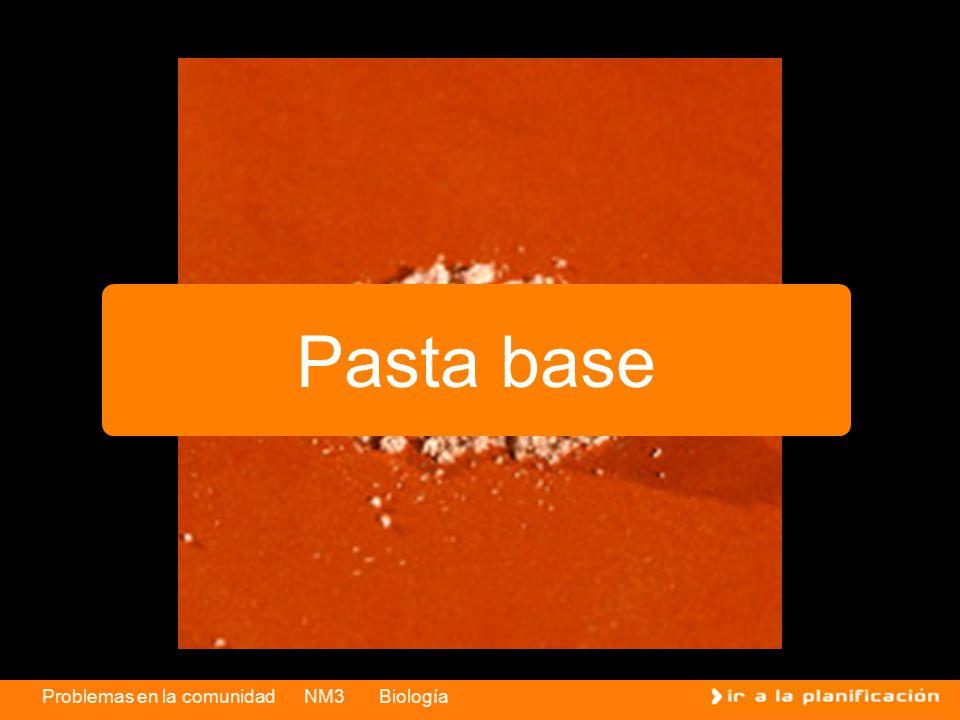 Problemas en la comunidad NM3 Biología Pasta base