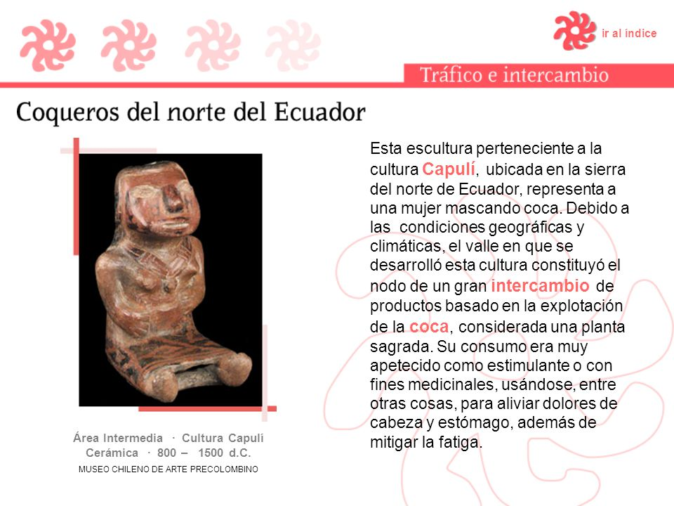 ir al índice Esta escultura perteneciente a la cultura Capulí, ubicada en la sierra del norte de Ecuador, representa a una mujer mascando coca. Debido