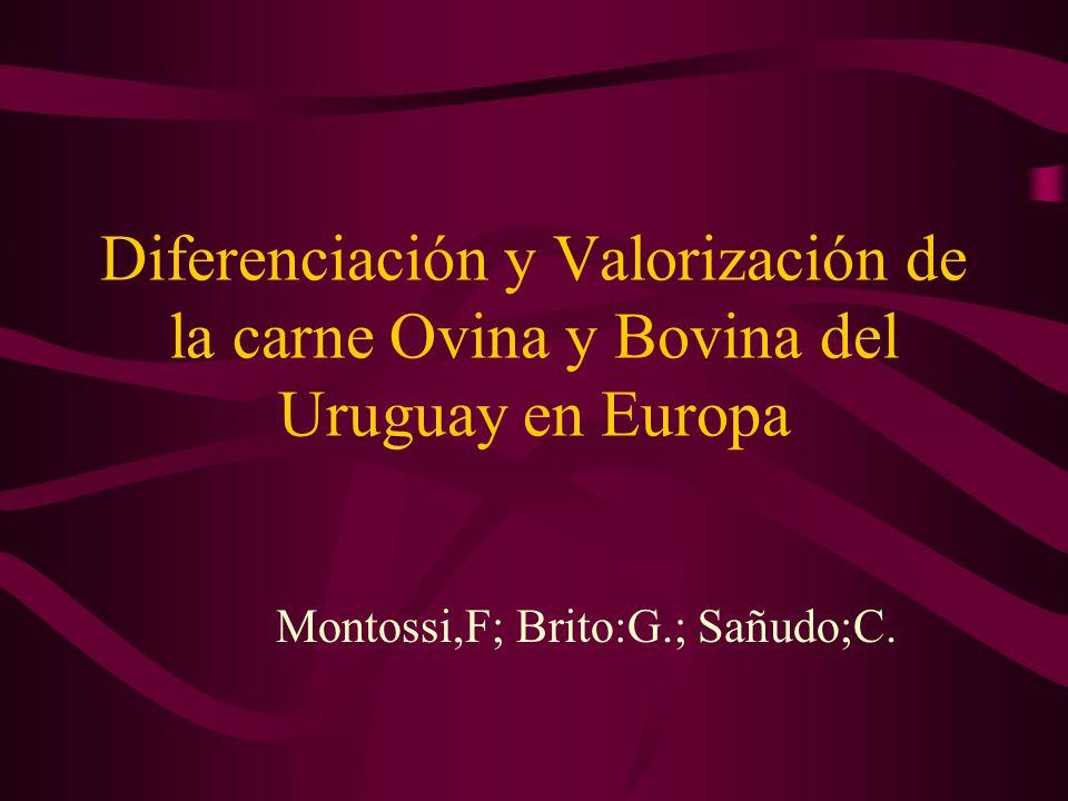 Diferenciación y Valorización de la carne Ovina y Bovina del Uruguay en Europa Montossi,F; Brito:G.; Sañudo;C.