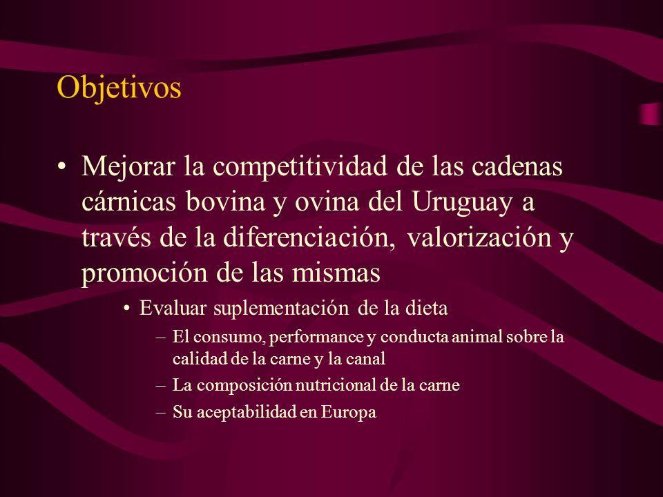 Objetivos Mejorar la competitividad de las cadenas cárnicas bovina y ovina del Uruguay a través de la diferenciación, valorización y promoción de las