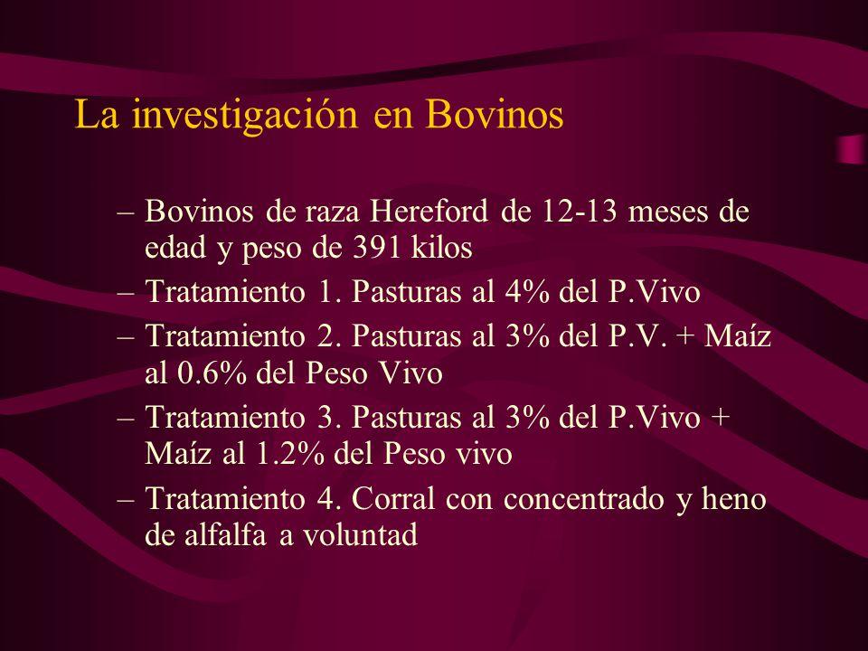 La investigación en Bovinos –Bovinos de raza Hereford de 12-13 meses de edad y peso de 391 kilos –Tratamiento 1. Pasturas al 4% del P.Vivo –Tratamient
