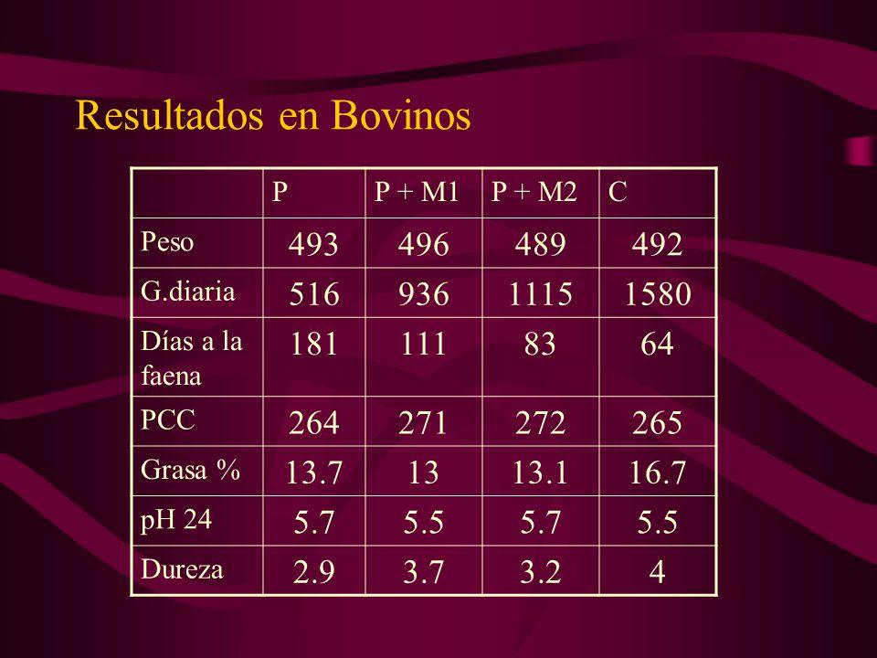 Resultados en Bovinos PP + M1P + M2C Peso 493496489492 G.diaria 51693611151580 Días a la faena 1811118364 PCC 264271272265 Grasa % 13.71313.116.7 pH 2