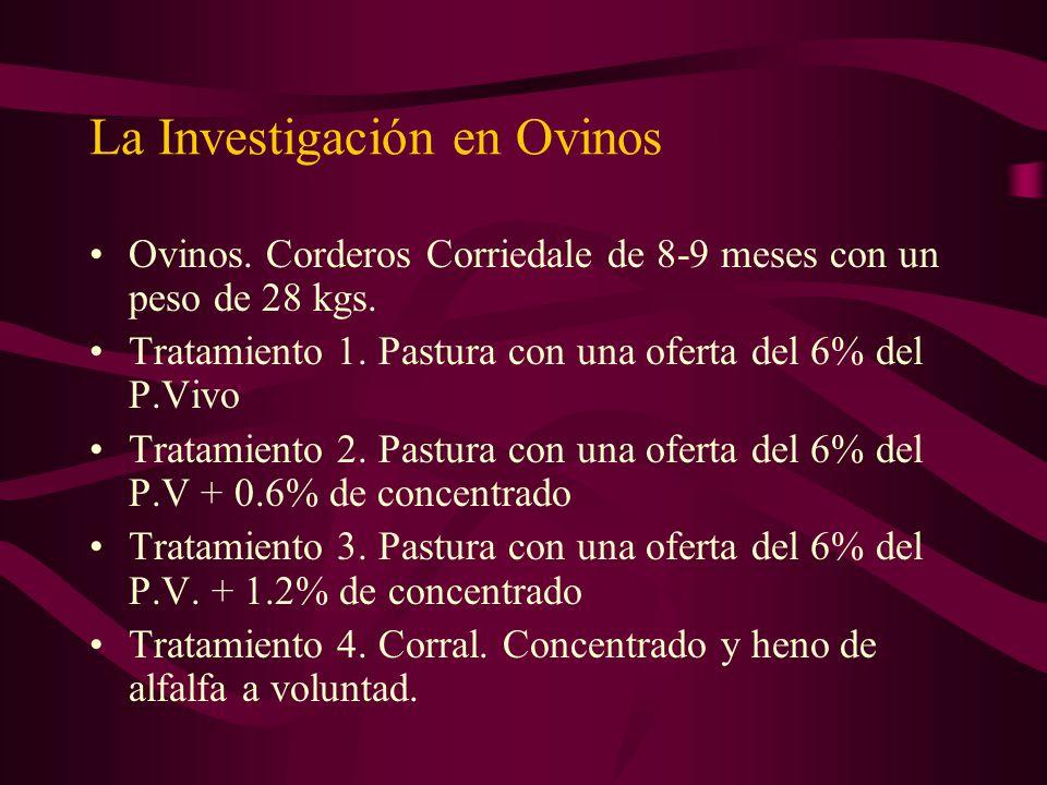 La Investigación en Ovinos Ovinos. Corderos Corriedale de 8-9 meses con un peso de 28 kgs. Tratamiento 1. Pastura con una oferta del 6% del P.Vivo Tra