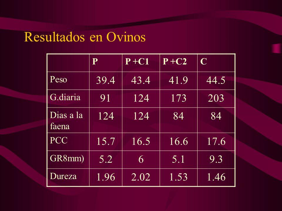 Resultados en Ovinos PP +C1P +C2C Peso 39.443.441.944.5 G.diaria 91124173203 Dias a la faena 124 84 PCC 15.716.516.617.6 GR8mm) 5.265.19.3 Dureza 1.96