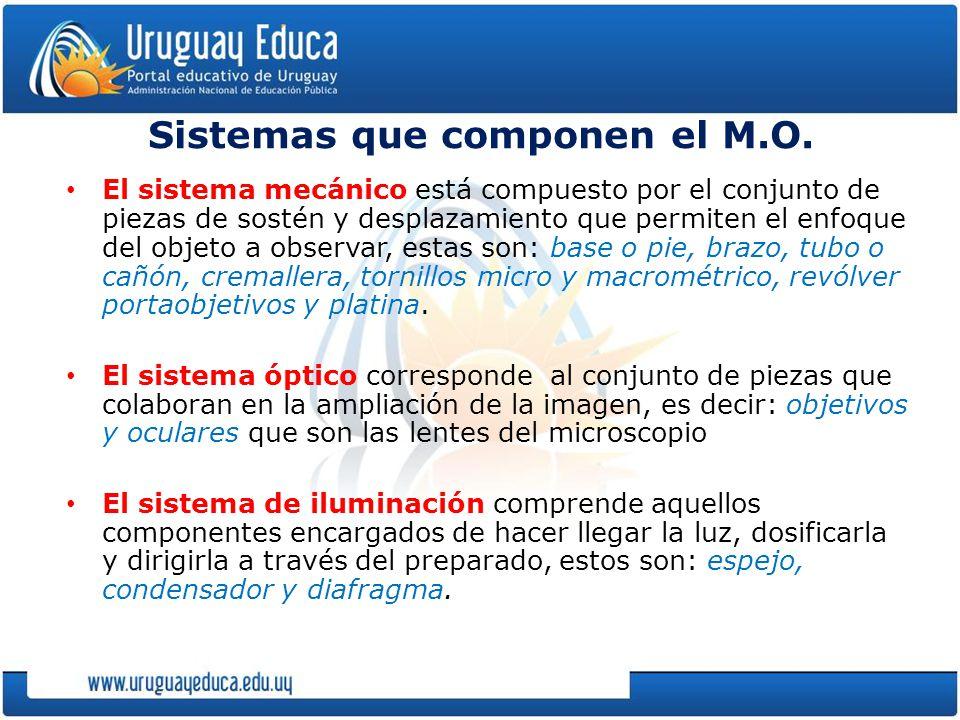 Sistemas que componen el M.O.