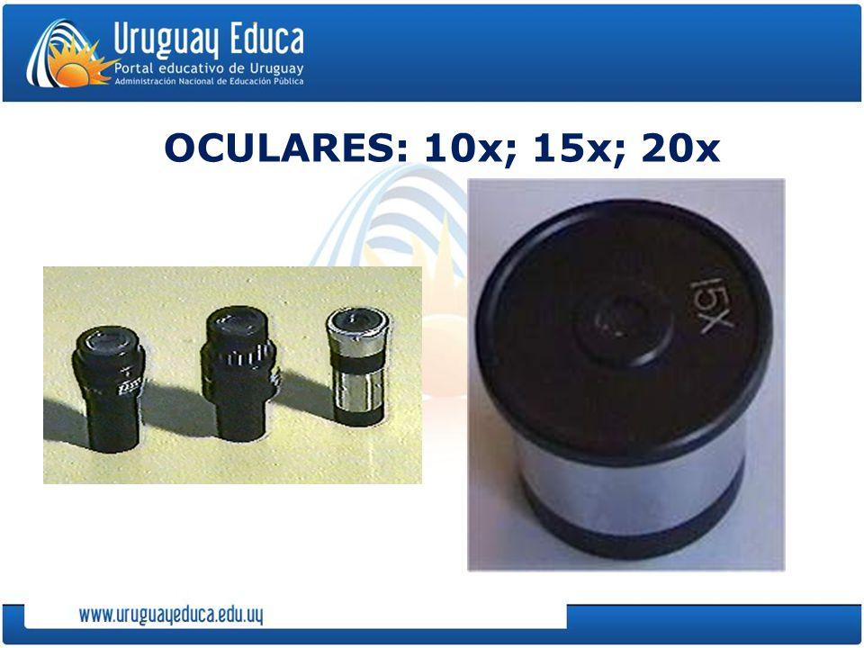 OCULARES: 10x; 15x; 20x