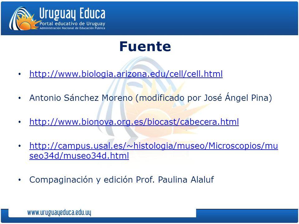 Fuente http://www.biologia.arizona.edu/cell/cell.html Antonio Sánchez Moreno (modificado por José Ángel Pina) http://www.bionova.org.es/biocast/cabecera.html http://campus.usal.es/~histologia/museo/Microscopios/mu seo34d/museo34d.html http://campus.usal.es/~histologia/museo/Microscopios/mu seo34d/museo34d.html Compaginación y edición Prof.