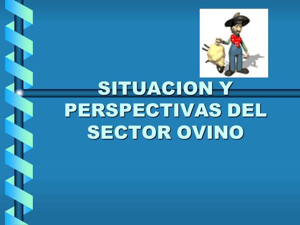 SITUACION Y PERSPECTIVAS DEL SECTOR OVINO