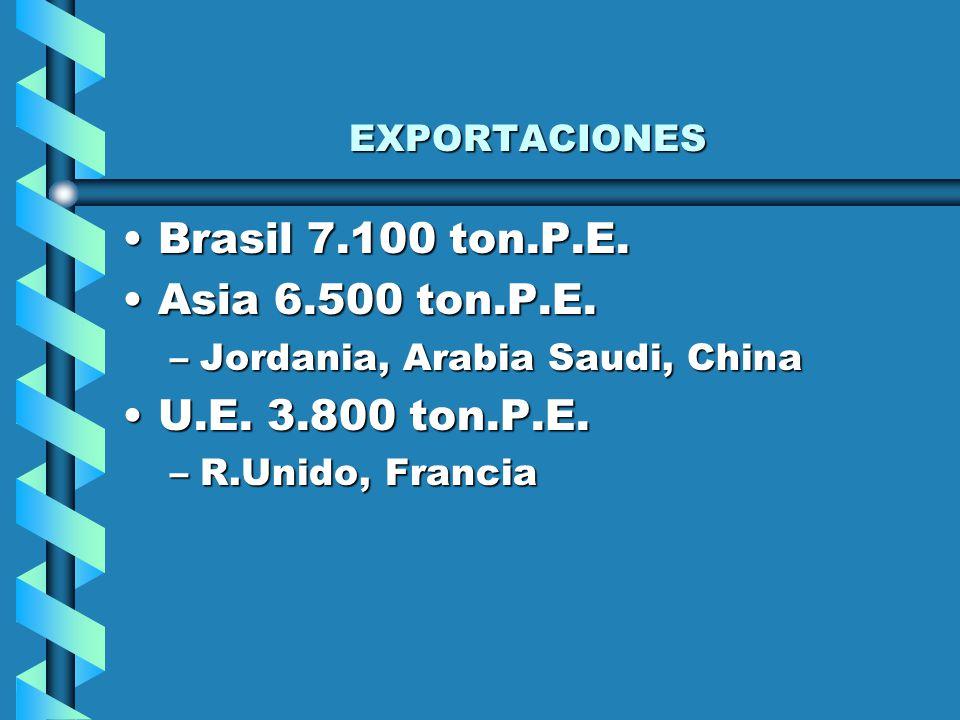 Exportaciones carne Congelada por categoría de producto