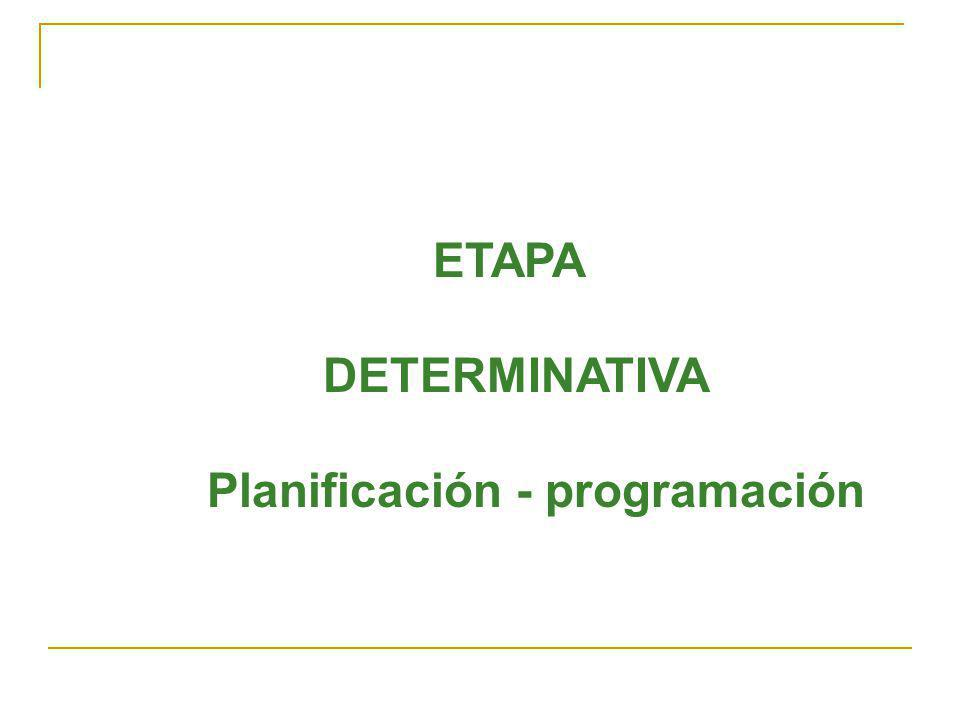 ETAPA DETERMINATIVA Planificación - programación
