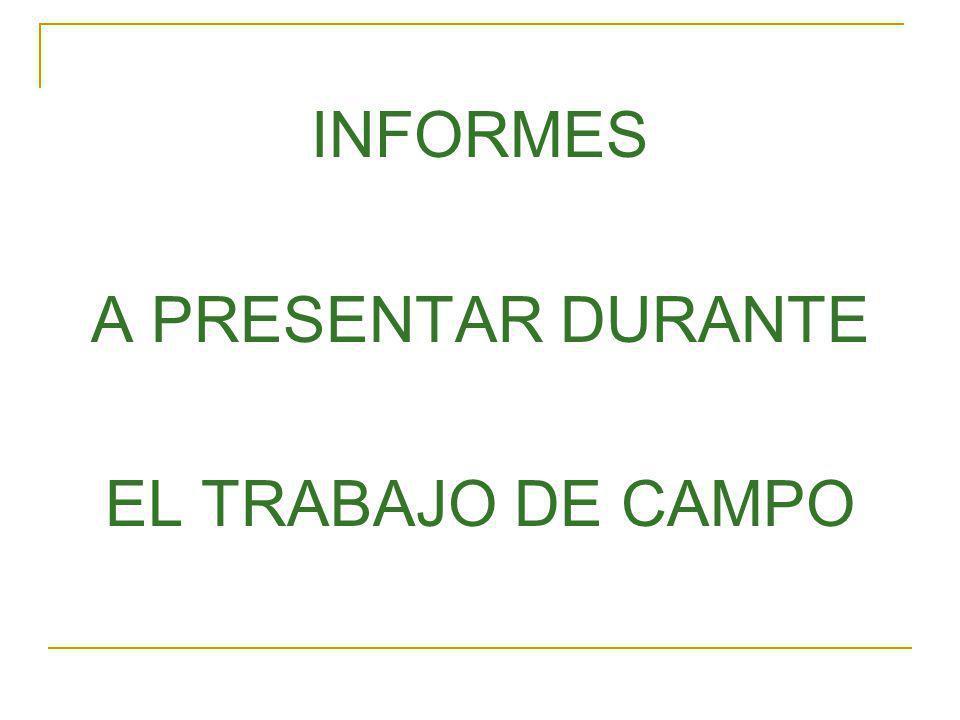INFORMES A PRESENTAR DURANTE EL TRABAJO DE CAMPO