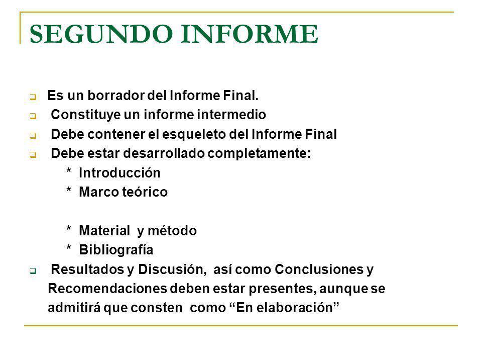 SEGUNDO INFORME Es un borrador del Informe Final. Constituye un informe intermedio Debe contener el esqueleto del Informe Final Debe estar desarrollad