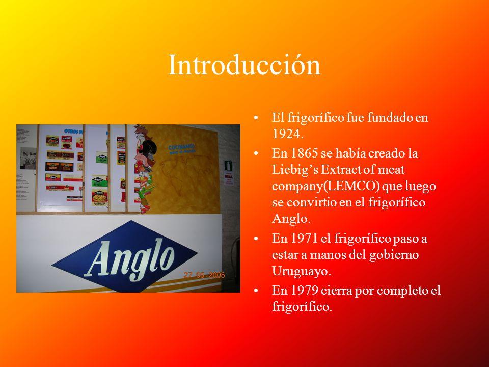 Introducción El frigorífico fue fundado en 1924. En 1865 se había creado la Liebigs Extract of meat company(LEMCO) que luego se convirtio en el frigor