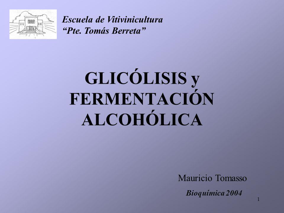 1 GLICÓLISIS y FERMENTACIÓN ALCOHÓLICA Mauricio Tomasso Bioquímica 2004 Escuela de Vitivinicultura Pte. Tomás Berreta