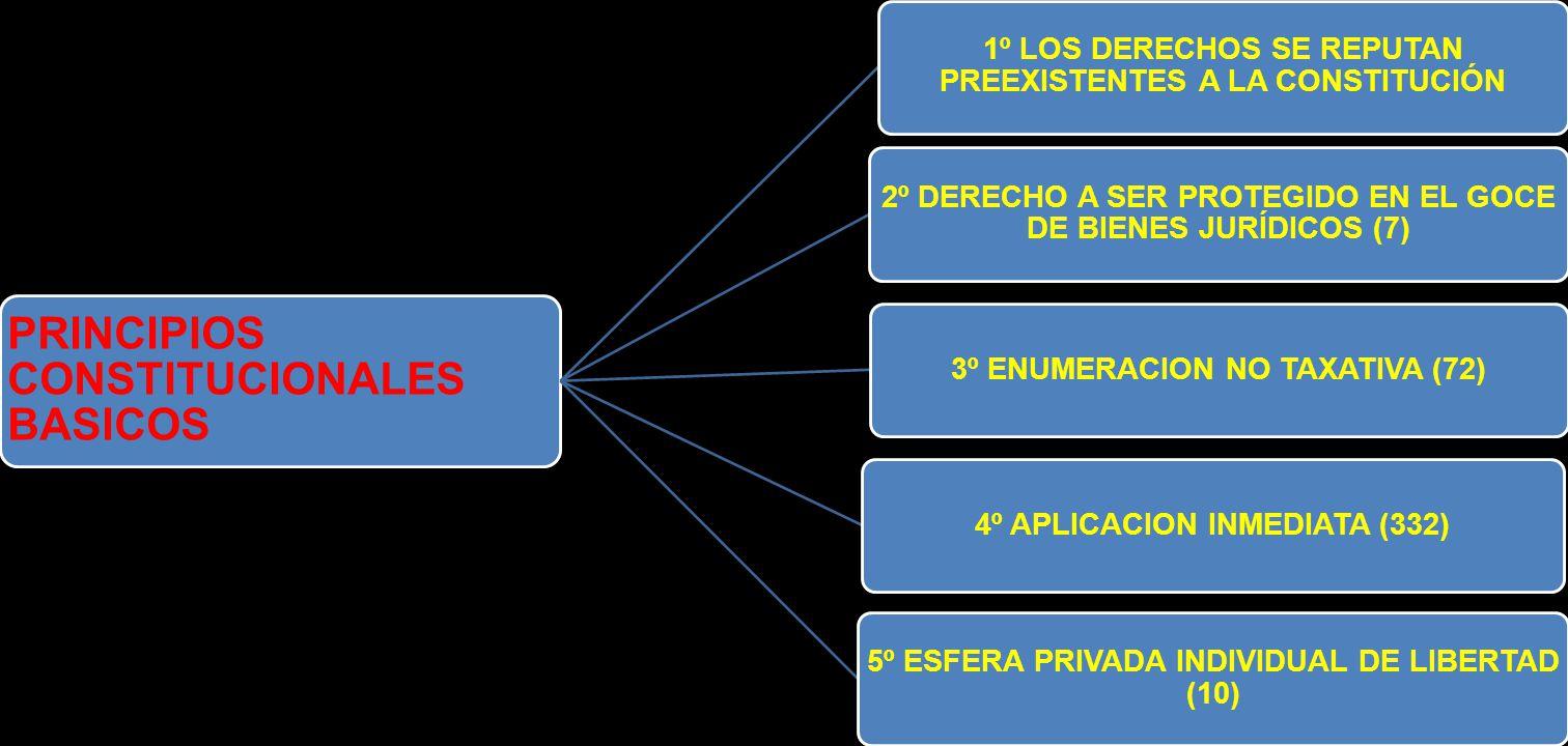 PRINCIPIOS CONSTITUCIONALES BASICOS 1º LOS DERECHOS SE REPUTAN PREEXISTENTES A LA CONSTITUCIÓN 2º DERECHO A SER PROTEGIDO EN EL GOCE DE BIENES JURÍDIC