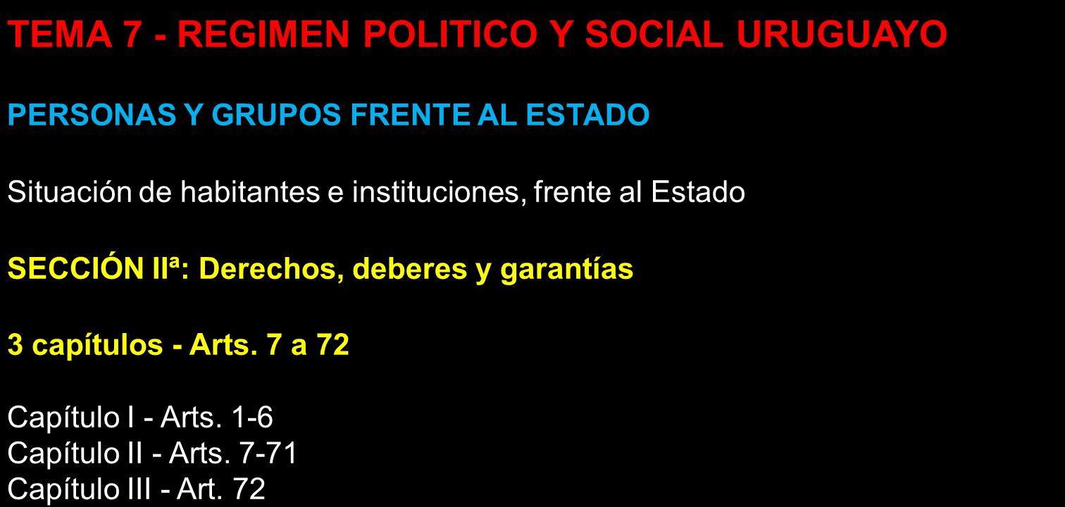 TEMA 7 - REGIMEN POLITICO Y SOCIAL URUGUAYO PERSONAS Y GRUPOS FRENTE AL ESTADO Situación de habitantes e instituciones, frente al Estado SECCIÓN IIª: