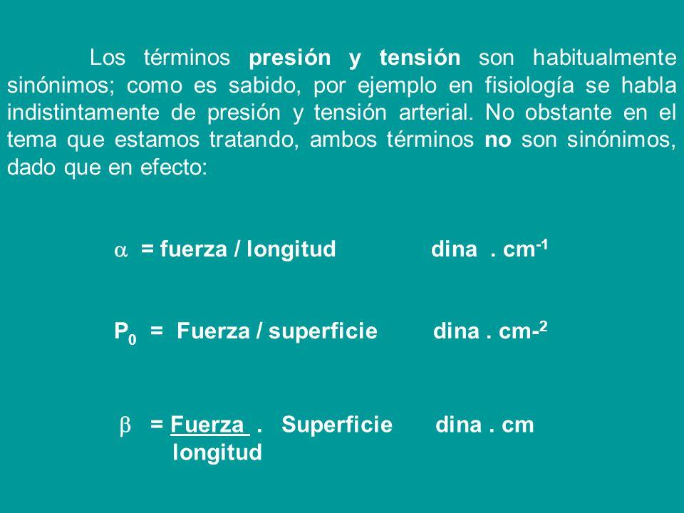 La molécula A, en el seno del líquido, es atraída por igual en todas las direcciones y todas las fuerzas se anulan entre sí. La molécula B, en la supe