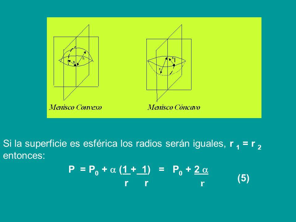 Laplace demostró que P 1 se expresa, para una superficie convexa (menisco convexo), mediante la ecuación: P 1 = ( 1 + 1 ) (4) r 1 r 2 [donde: = tensió