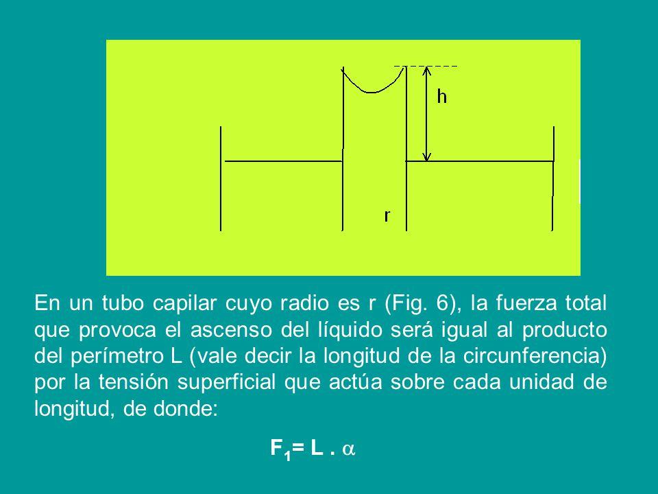 LEY DE JURIN Esta ley se refiere al ascenso y descenso de los líquidos en tubos capilares (recuerde que en los capilares no se cumple el principio de