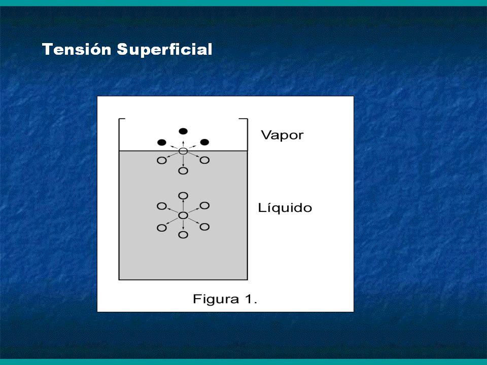 La molécula A, en el seno del líquido, es atraída por igual en todas las direcciones y todas las fuerzas se anulan entre sí.