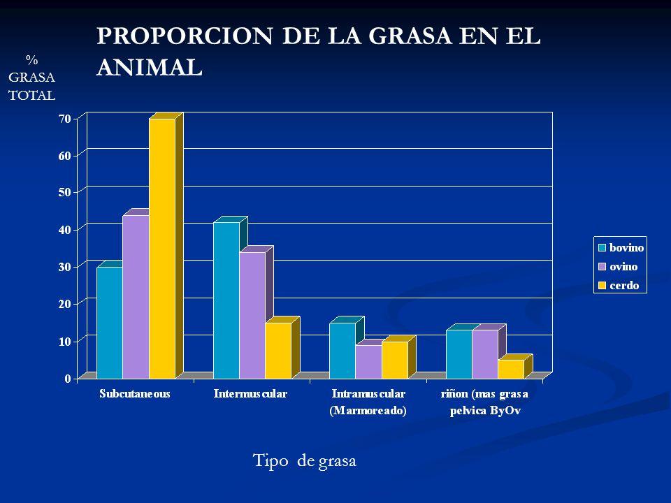 % GRASA TOTAL Tipo de grasa PROPORCION DE LA GRASA EN EL ANIMAL