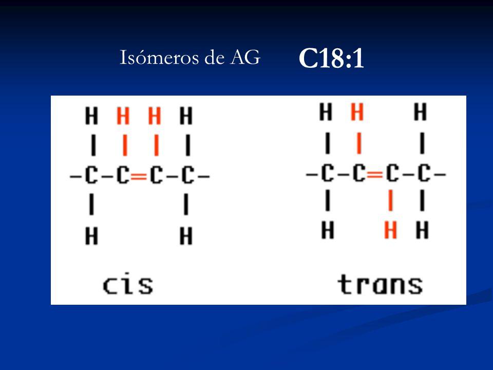 Isómeros de AG C18:1