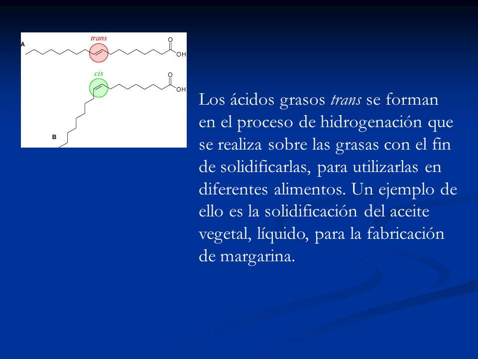 Los ácidos grasos trans se forman en el proceso de hidrogenación que se realiza sobre las grasas con el fin de solidificarlas, para utilizarlas en dif