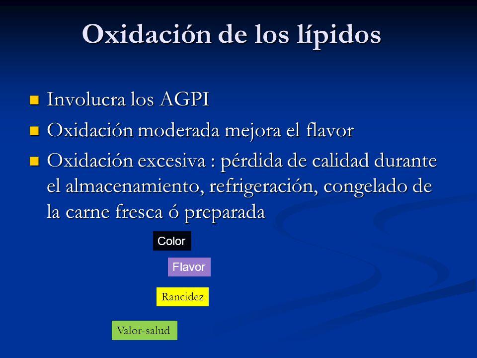 Oxidación de los lípidos Involucra los AGPI Involucra los AGPI Oxidación moderada mejora el flavor Oxidación moderada mejora el flavor Oxidación exces