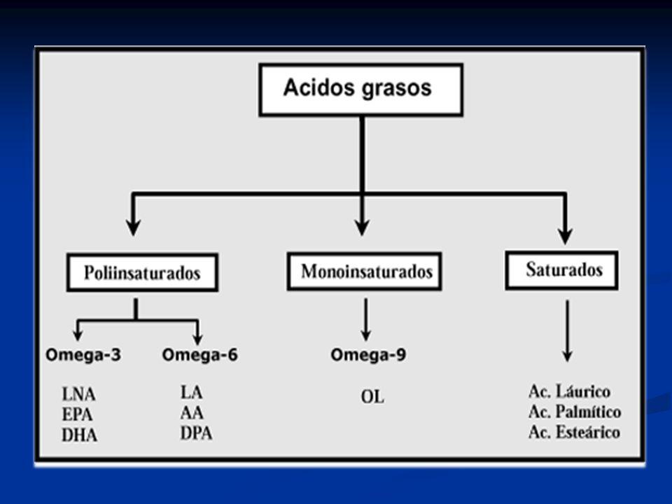 C18:2 (cis-9, trans-11) C18:2 (trans-10, cis-12) C18:1 (trans-11) C18:1 (trans-10) Intermediarios de la biohidrogenación Absorción intestinal Incorporación en las grasas de la leche Acumulación en la carne