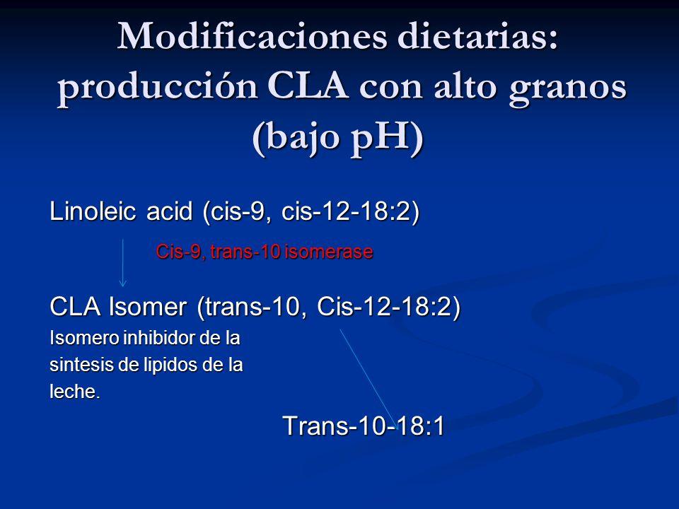 Modificaciones dietarias: producción CLA con alto granos (bajo pH) Linoleic acid (cis-9, cis-12-18:2) Cis-9, trans-10 isomerase Cis-9, trans-10 isomer