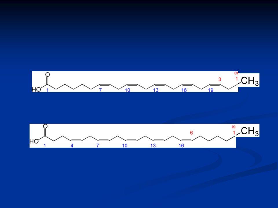 Los ácidos grasos trans y conjugados que se encuentran en mayor proporción en la leche son : El ácido ruménico C18:2 (cis-9, trans-11) principal « conjugado » producido en el rumen formación por la -9 desaturasa C18:1 (trans-11) C18:2 (cis-9, trans-11) El ácido vaccénico C18:1 (trans-11) principal « trans » producido en el rumen -9 desaturasa