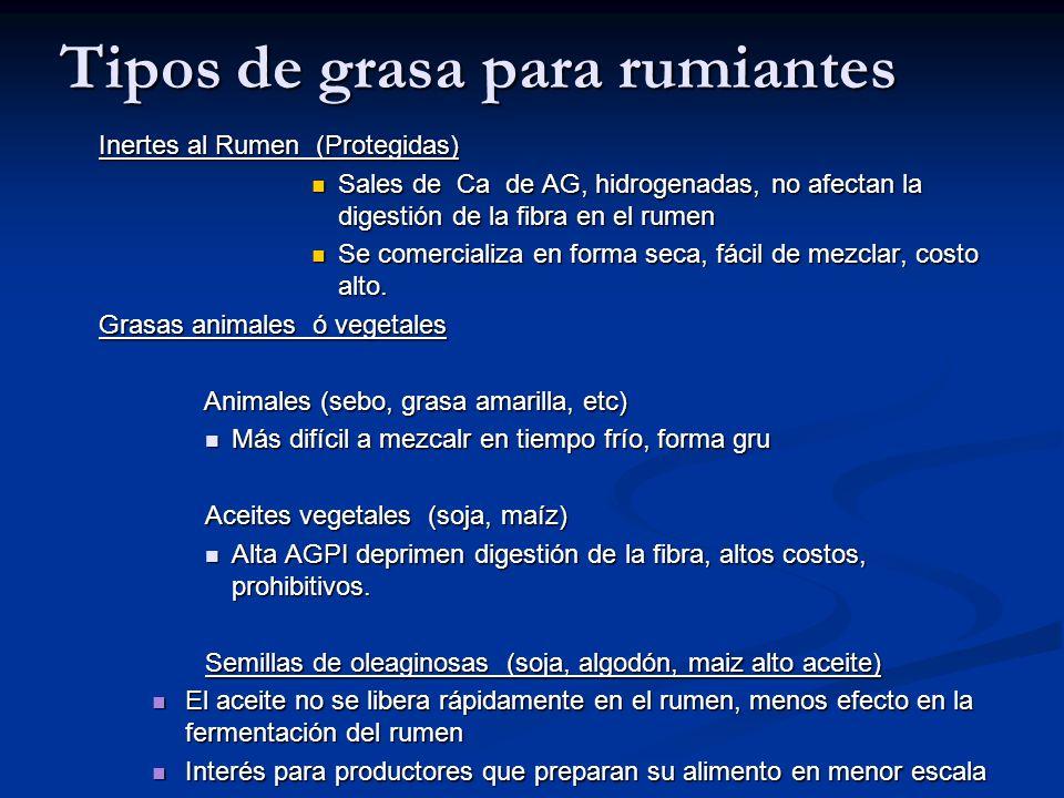 Tipos de grasa para rumiantes Inertes al Rumen (Protegidas) Sales de Ca de AG, hidrogenadas, no afectan la digestión de la fibra en el rumen Sales de