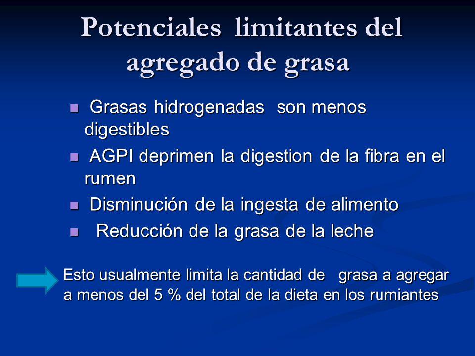 Potenciales limitantes del agregado de grasa Potenciales limitantes del agregado de grasa Grasas hidrogenadas son menos digestibles Grasas hidrogenada
