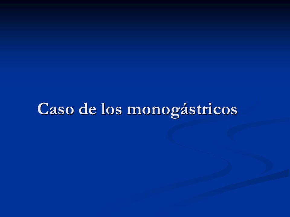 Caso de los monogástricos