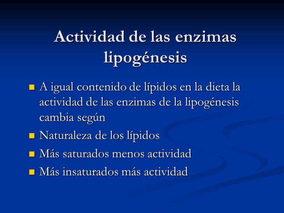 Actividad de las enzimas lipogénesis A igual contenido de lípidos en la dieta la actividad de las enzimas de la lipogénesis cambia según A igual conte