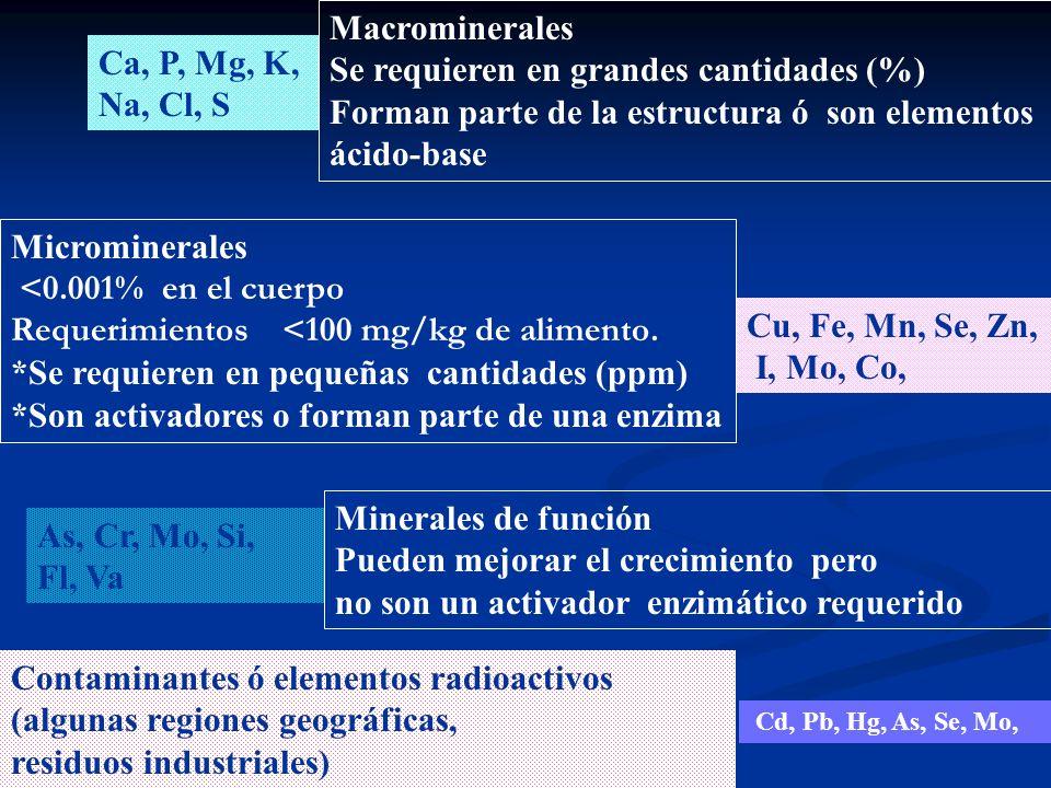 Ca, P, Mg, K, Na, Cl, S Macrominerales Se requieren en grandes cantidades (%) Forman parte de la estructura ó son elementos ácido-base Cu, Fe, Mn, Se,