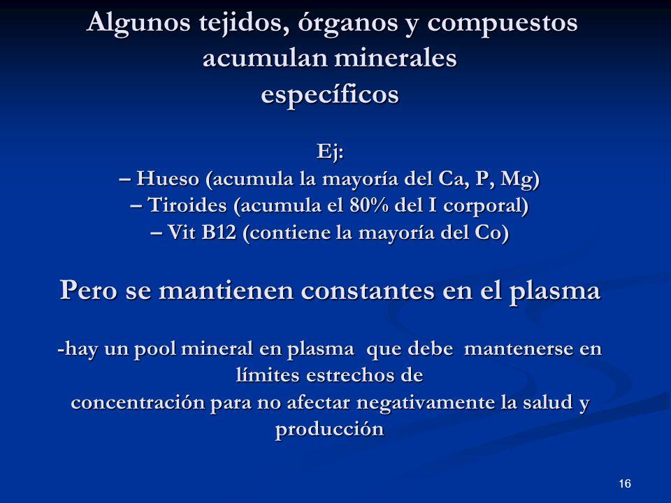 Algunos tejidos, órganos y compuestos acumulan minerales específicos Ej: – Hueso (acumula la mayoría del Ca, P, Mg) – Tiroides (acumula el 80% del I c