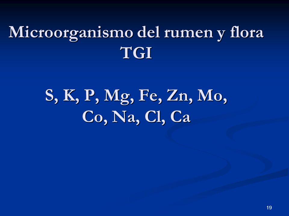 Microorganismo del rumen y flora TGI S, K, P, Mg, Fe, Zn, Mo, Co, Na, Cl, Ca 19