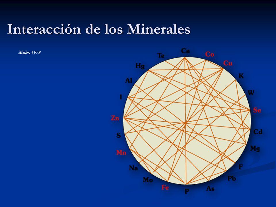 Interacción de los Minerales Miller, 1979