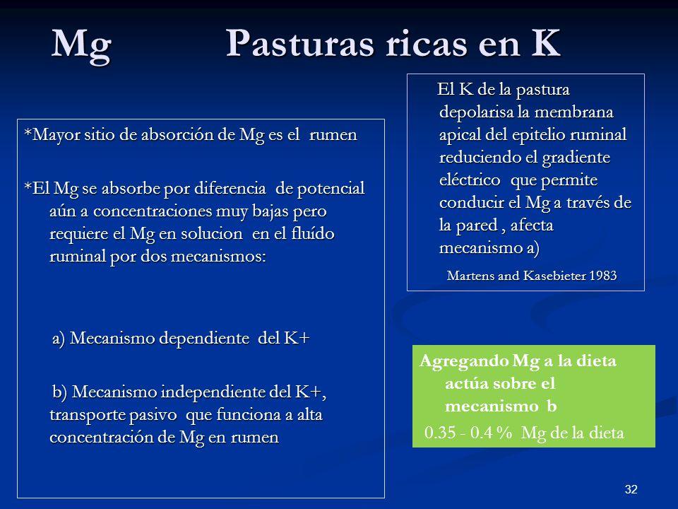 Mg Pasturas ricas en K *Mayor sitio de absorción de Mg es el rumen *El Mg se absorbe por diferencia de potencial aún a concentraciones muy bajas pero