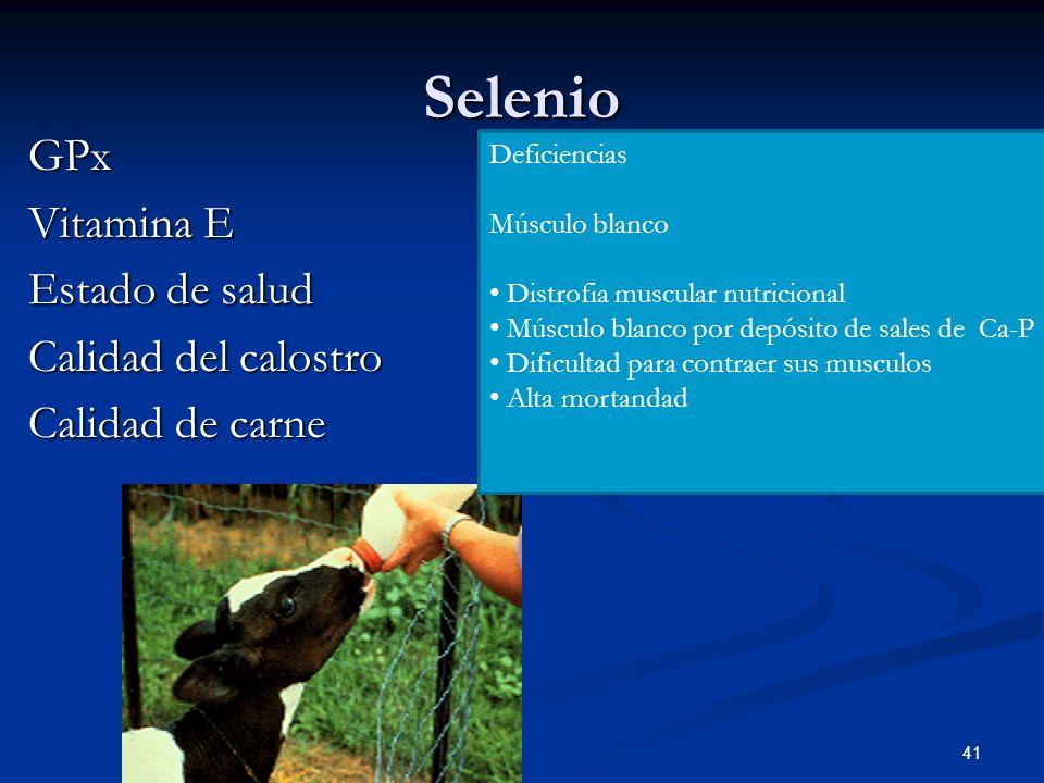Selenio 41 GPx Vitamina E Estado de salud Calidad del calostro Calidad de carne Deficiencias Músculo blanco Distrofia muscular nutricional Músculo bla