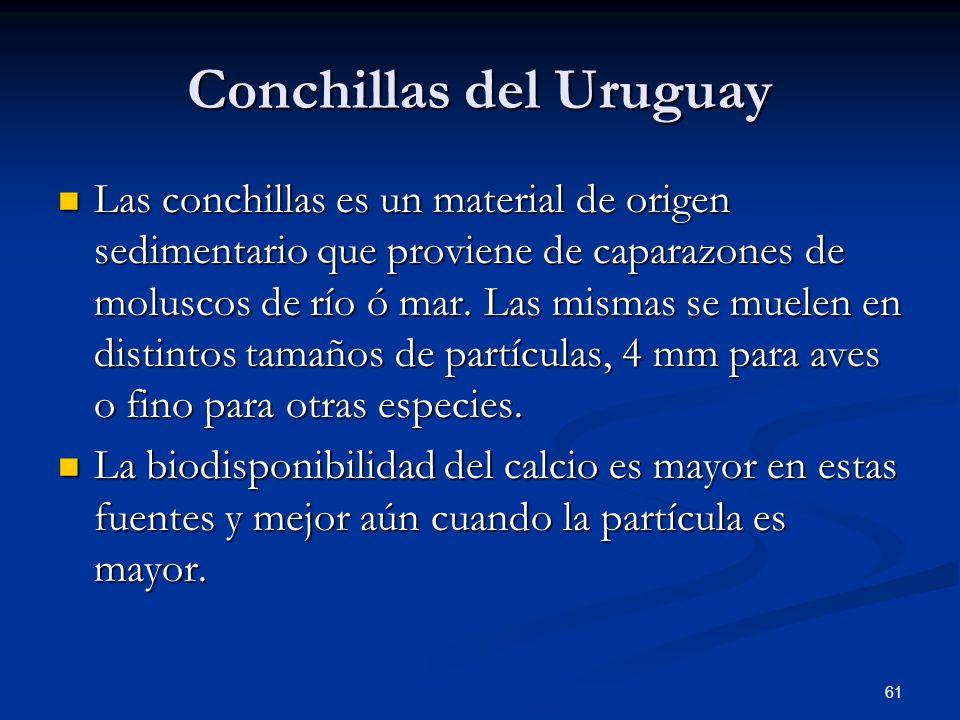 Conchillas del Uruguay Las conchillas es un material de origen sedimentario que proviene de caparazones de moluscos de río ó mar. Las mismas se muelen