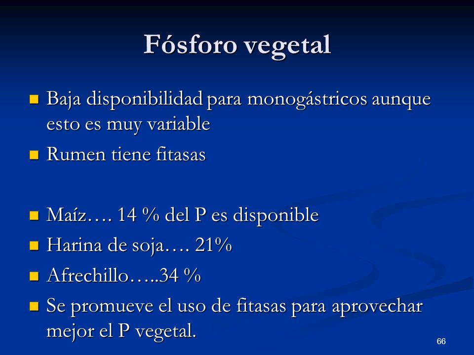 Fósforo vegetal Baja disponibilidad para monogástricos aunque esto es muy variable Baja disponibilidad para monogástricos aunque esto es muy variable