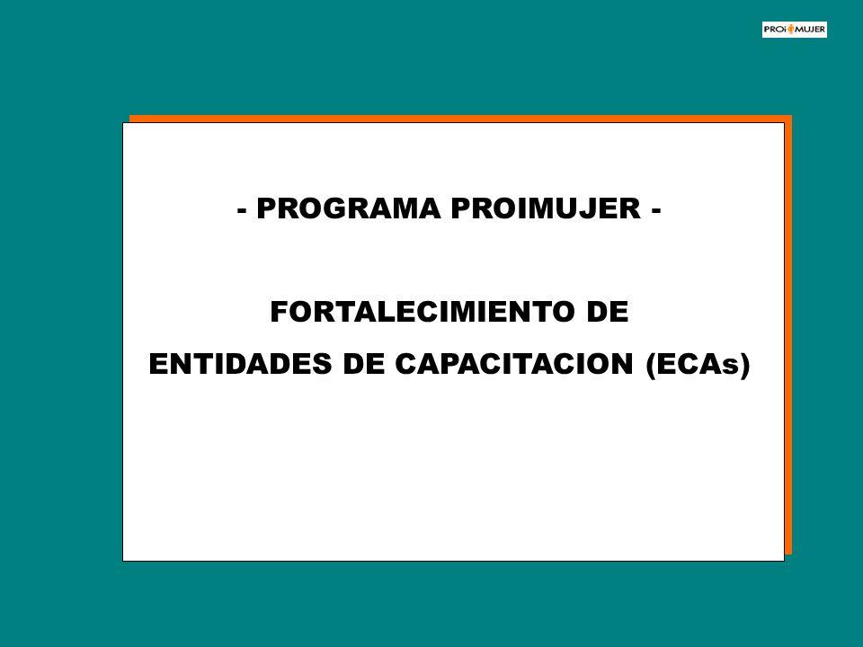 - PROGRAMA PROIMUJER - FORTALECIMIENTO DE ENTIDADES DE CAPACITACION (ECAs)