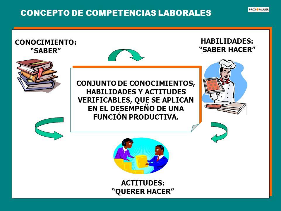 HABILIDADES: SABER HACER CONJUNTO DE CONOCIMIENTOS, HABILIDADES Y ACTITUDES VERIFICABLES, QUE SE APLICAN EN EL DESEMPEÑO DE UNA FUNCIÓN PRODUCTIVA. CO