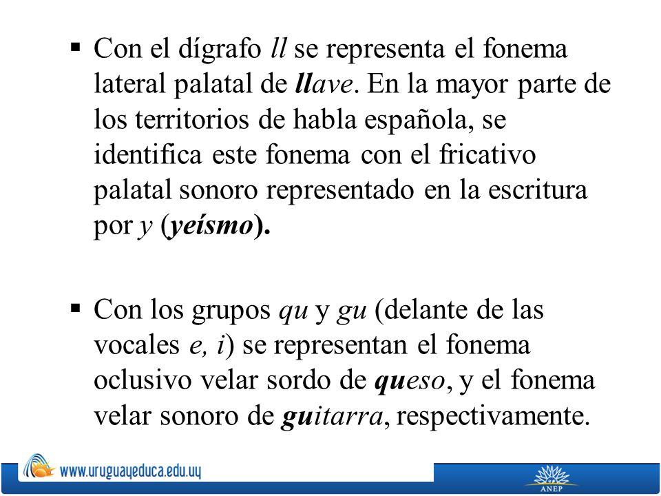 Con el dígrafo ll se representa el fonema lateral palatal de llave. En la mayor parte de los territorios de habla española, se identifica este fonema