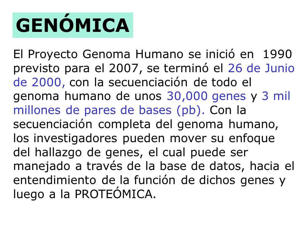 El Proyecto Genoma Humano se inició en 1990 previsto para el 2007, se terminó el 26 de Junio de 2000, con la secuenciación de todo el genoma humano de unos 30,000 genes y 3 mil millones de pares de bases (pb).