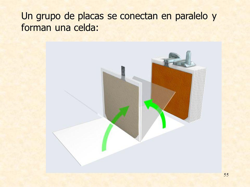55 Un grupo de placas se conectan en paralelo y forman una celda: