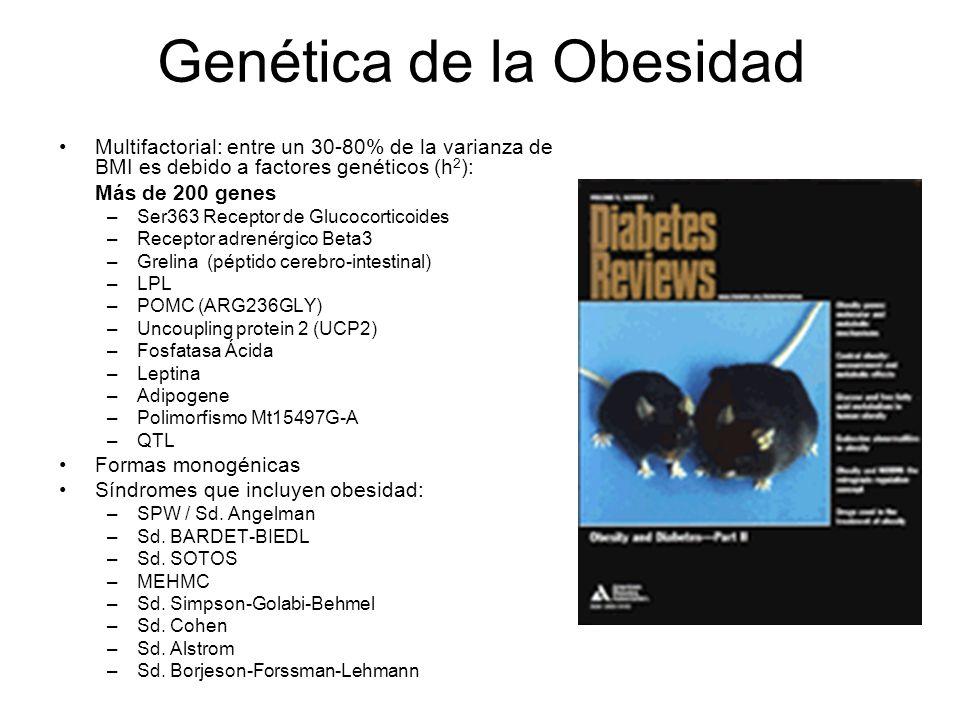Genética de la Obesidad Multifactorial: entre un 30-80% de la varianza de BMI es debido a factores genéticos (h 2 ): Más de 200 genes –Ser363 Receptor